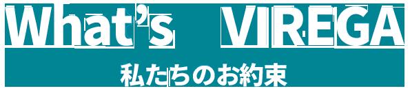 What VIREGA(ビレガ)私たちのお約束